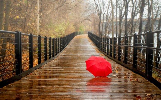 11146_Red-umbrella-on-the-bridge-Rainy-day